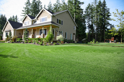 BHLCo's high quality grade fertilizers will provide you with that lush green lawn you have always wanted!