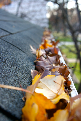 Fall Cleanup - Leaves in Gutter-hudson