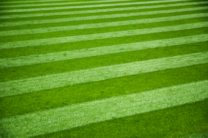 Professional striping of your turf is sure to be admired by all that see it!